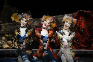 Cats - Forum Horsens 2017