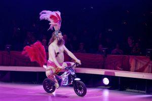 Cirkus Summarum 2021